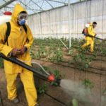 spraying your food in a hazmat suit