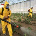 pesticide-spraying
