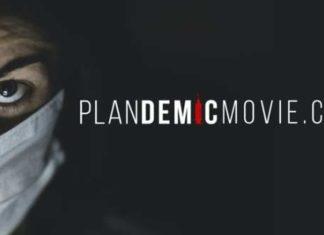 plandemic movie judy mikovics